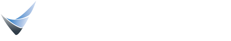 Executive Velocity
